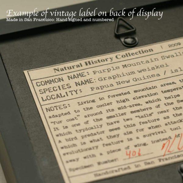museum label