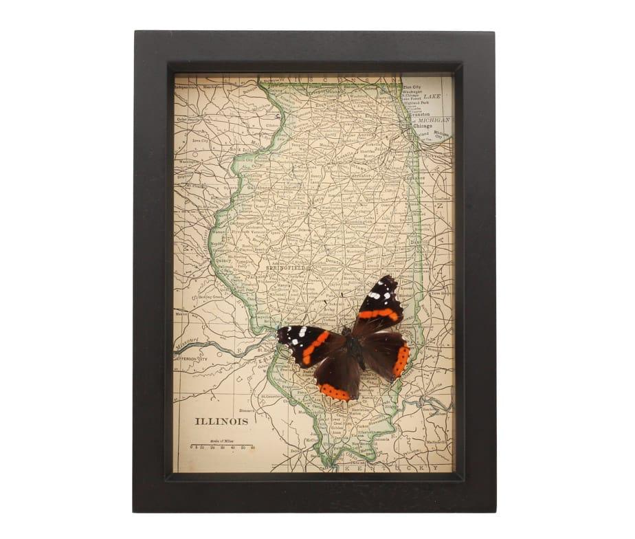 framed map Illinois