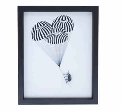 Banksy Beetle Diorama