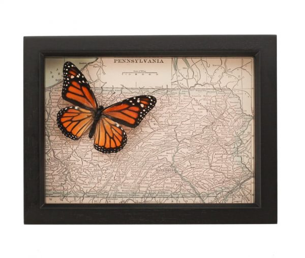 Pennsylvania map with butterfly