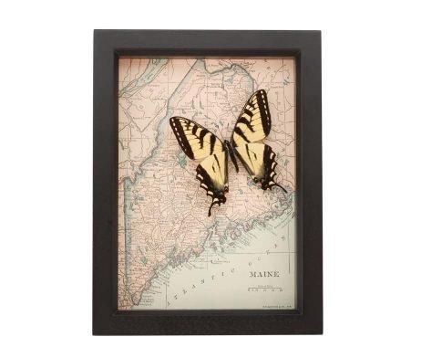 framed maine map