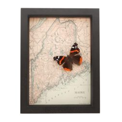 framed map maine