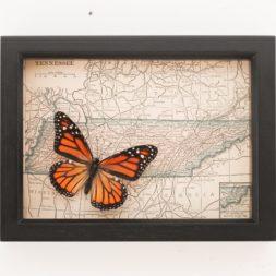 framed map Nashville