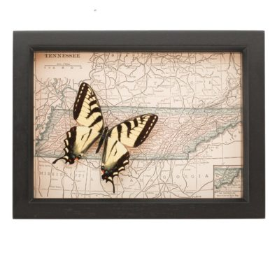 Framed Map of Tennessee with Butterfly