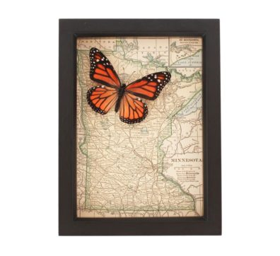 Framed Map of Minnesota with Butterfly