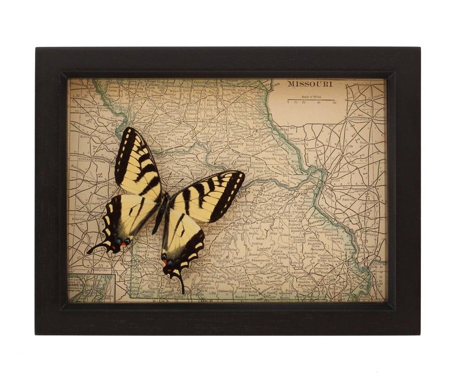 Missouri framed map