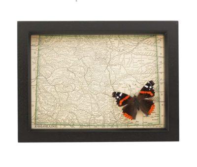 framed colorado map antique