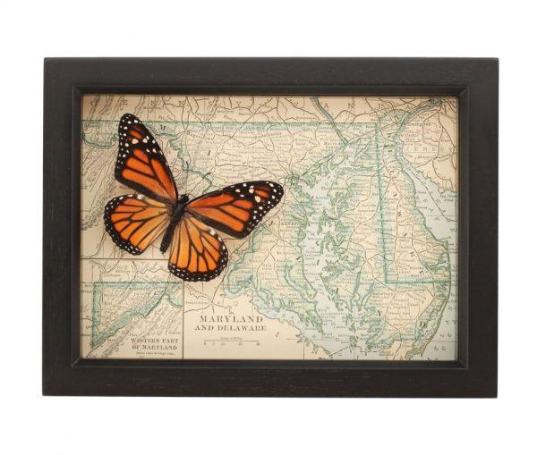 framed map of maryland