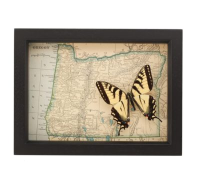 Framed Map Oregon Butterfly