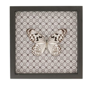 Butterfly Damask Design
