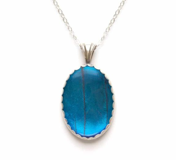 real blue morpho butterfly wing necklace