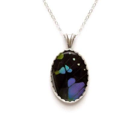 real butterfly butterfly jewelry