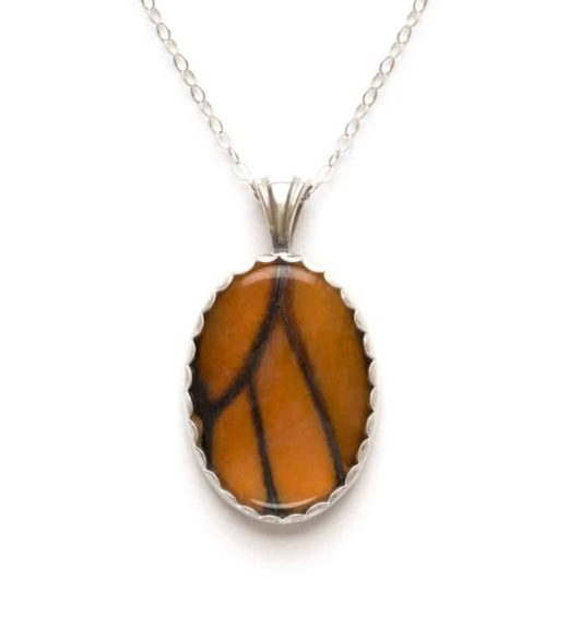 real monarch butterfly jewelry