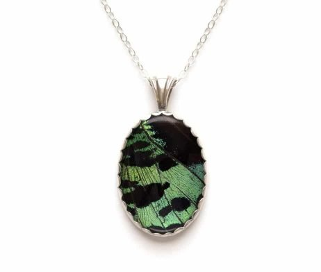 sunset moth wing jewelry