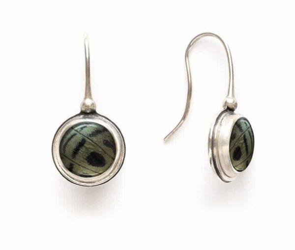 charles darwin earrings