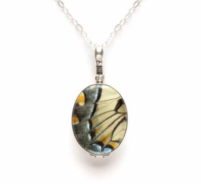 real tiger swallowtail butterfly jewelry