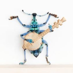 Insect Dioramas
