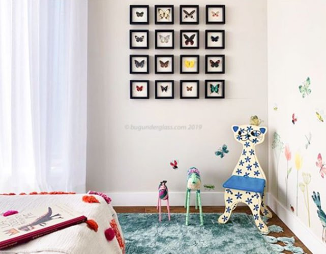 baby room butterfly displays
