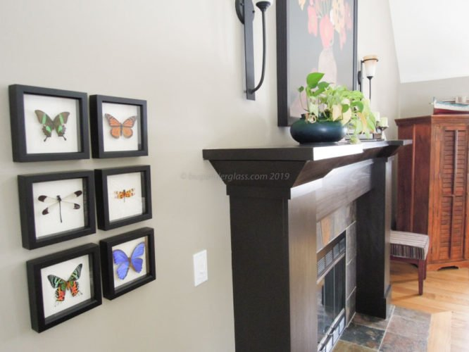 modern butterfly decor