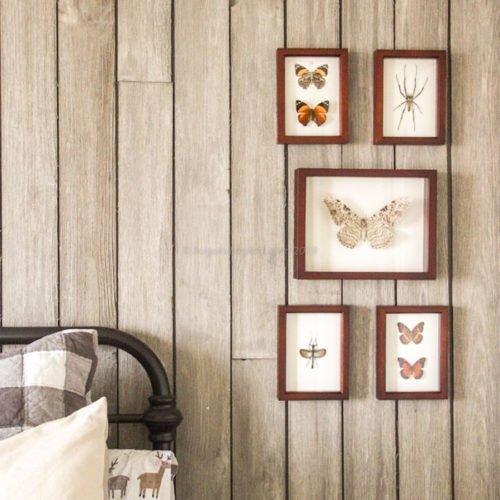 dark walnut shadowbox frames