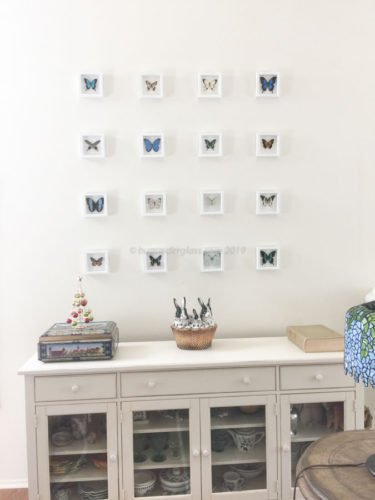 four by four framed butterflies