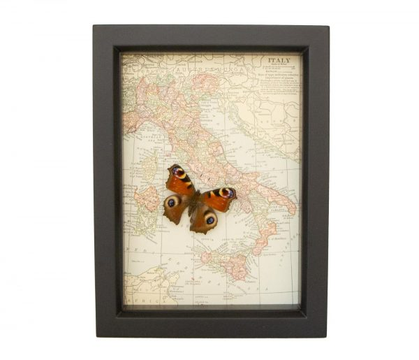 antique italy map