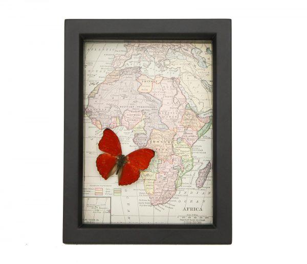 framed african map